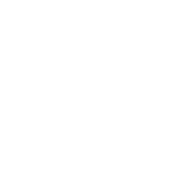 NEOVANTAGE Logo Light